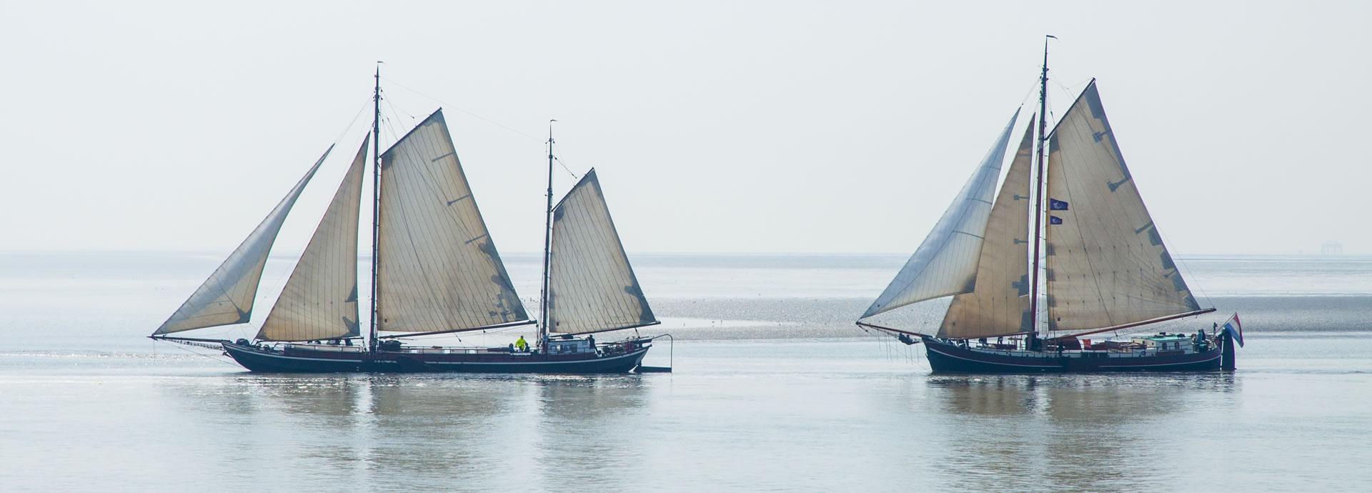 schepen-op-t-wad